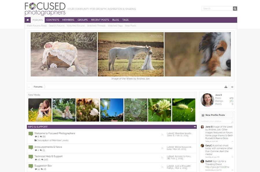 Focused Photographers forum