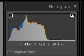 histogram camera no compensation